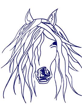 Çingene Atını İstersen Sende Boya, 2005